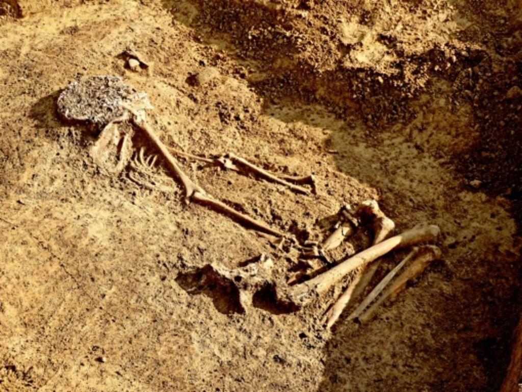 Erst römische Keramik, dann eine Keltensiedlung, dann das:  am Römerhügel wurde ein Steinzeitgrab gefunden. Foto: Landesdenkmalamt