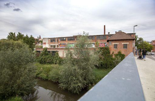IBA-Gelände liegt noch im Dornröschenschlaf