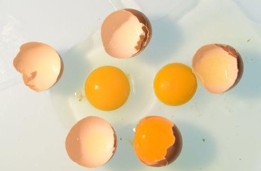 Freiland-Eier aus den Norma-Märkten zurückgerufen