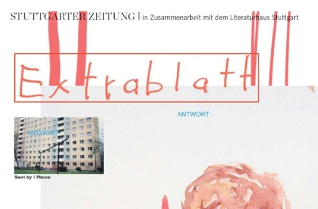 """Ein Auschnitt aus dem """"Extrablatt"""" von Juli Zeh und der Künstlerin Birgit Brenner. Foto: StZ"""