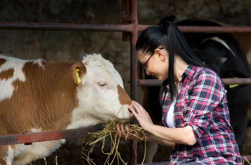 Was es bewirkt, mit  Rindern zu reden