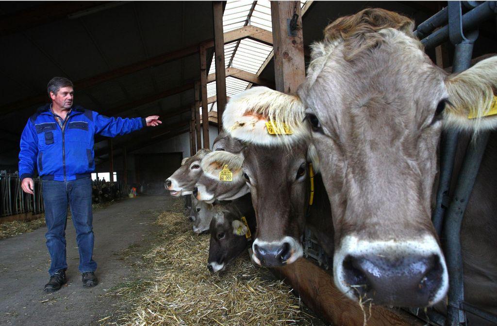 Künstliche Preiserhöhungen würden laut Regierung weder Tieren, Umwelt noch den Verbrauchern helfen. Foto: dpa