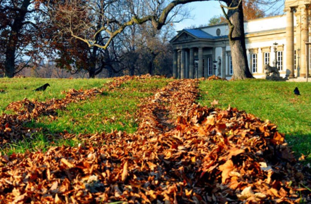 Must 1: Nie ist der Rosensteinpark schöner als im Herbst. Dann wirft sich der nach englischem Vorbild Mitte des 19. Jahrhunderts angelegte Park in ein rotgelbbraunes Farbenkleid, das es locker mit dem Indian Summer in Neuengland aufnehmen könnte. Wem es nach dem Herbstspaziergang nach naturkundlicher Anregung ist, der schaut noch auf einem Sprung im Rosensteinmuseum oder dem Museum am Löwentor vorbei. Mehr Infos gibt es hier. Foto: Leserfotograf andy1955