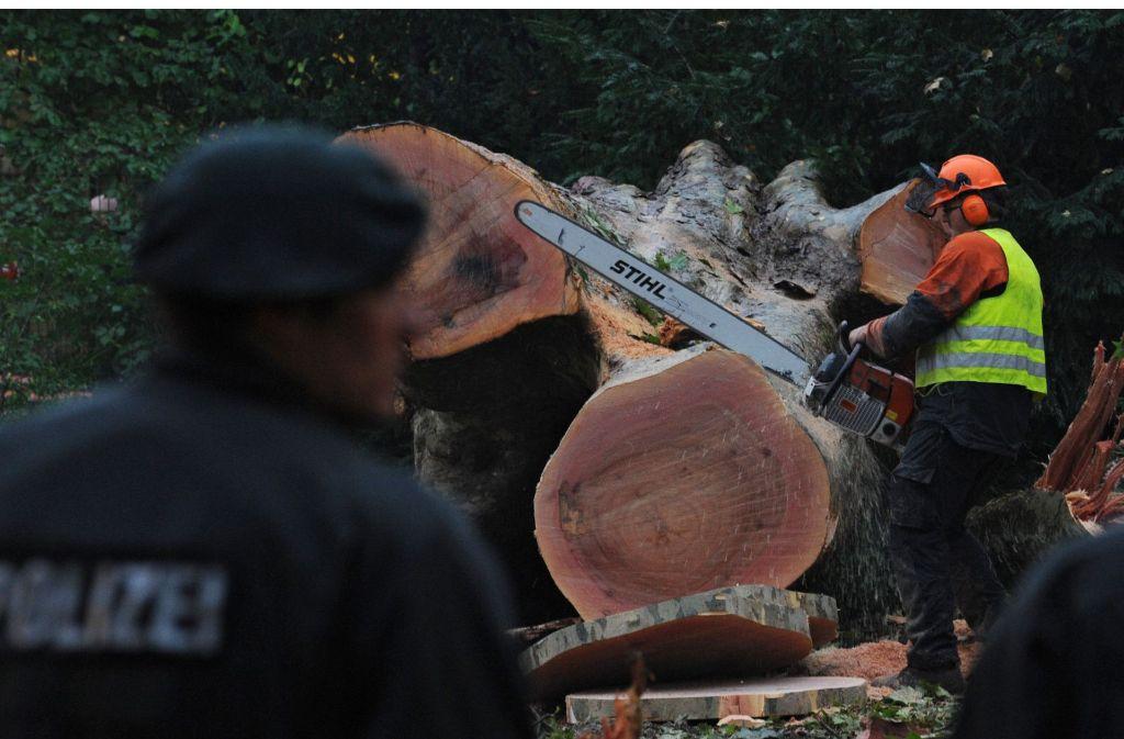 Die Baumfällungen im Schlossgarten gelangen nur unter massivem Polizeieinsatz. Foto: dpa