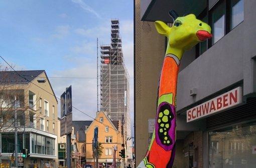 Die Gablenberger Giraffen wecken Begehrlichkeiten