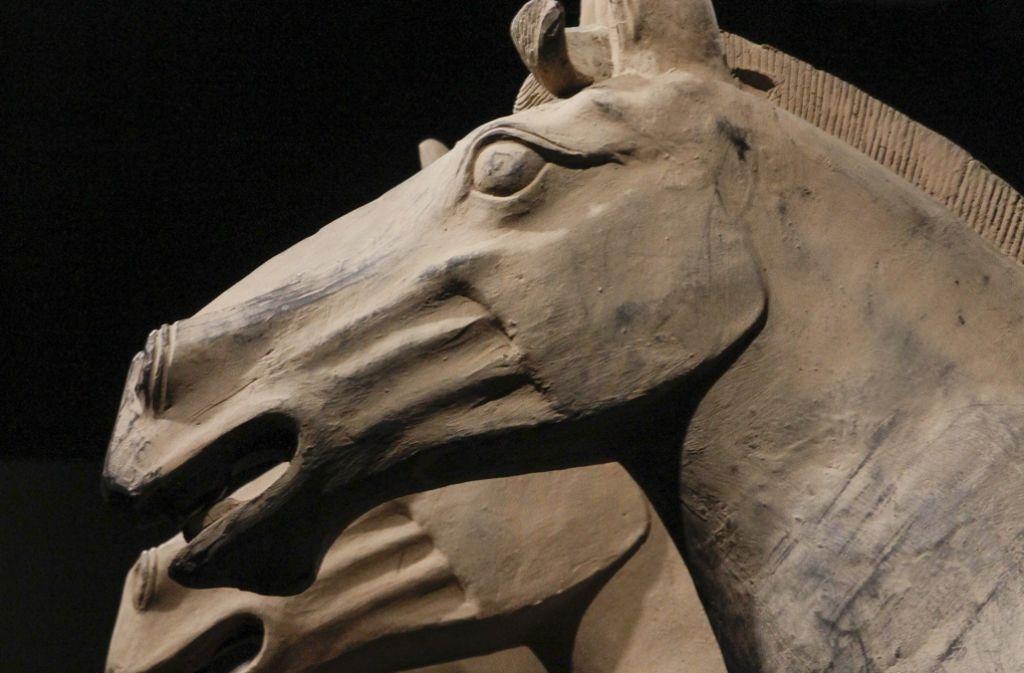 Nicht nur Krieger, auch ein Gespann mit vier Pferden gehört zur Grabbeigabe. Foto: factum/Bach