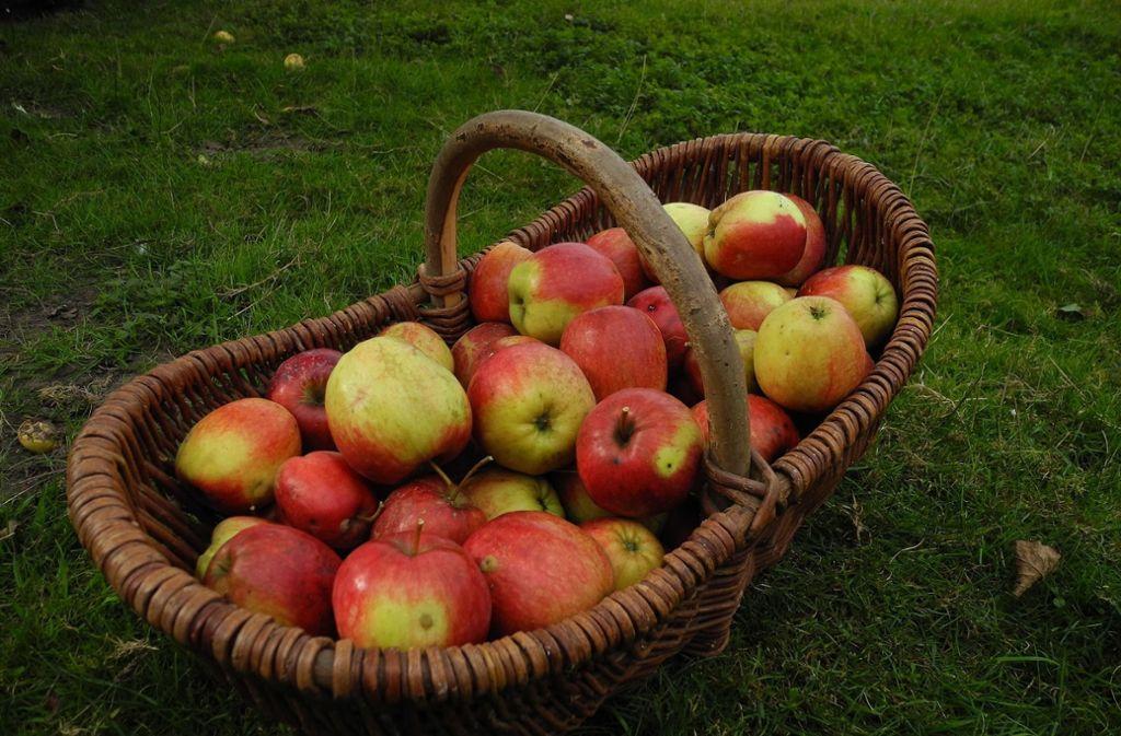 Selbstgemachter Apfelsaft aus heimischem Streuobst dient dem Erhalt der Kulturlandschaft. Foto: Pixabay