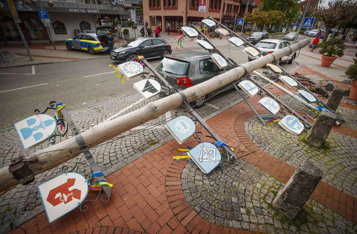 Der umgestürzte Baum beschädigte ein Auto. Foto: Gottfried Stoppel