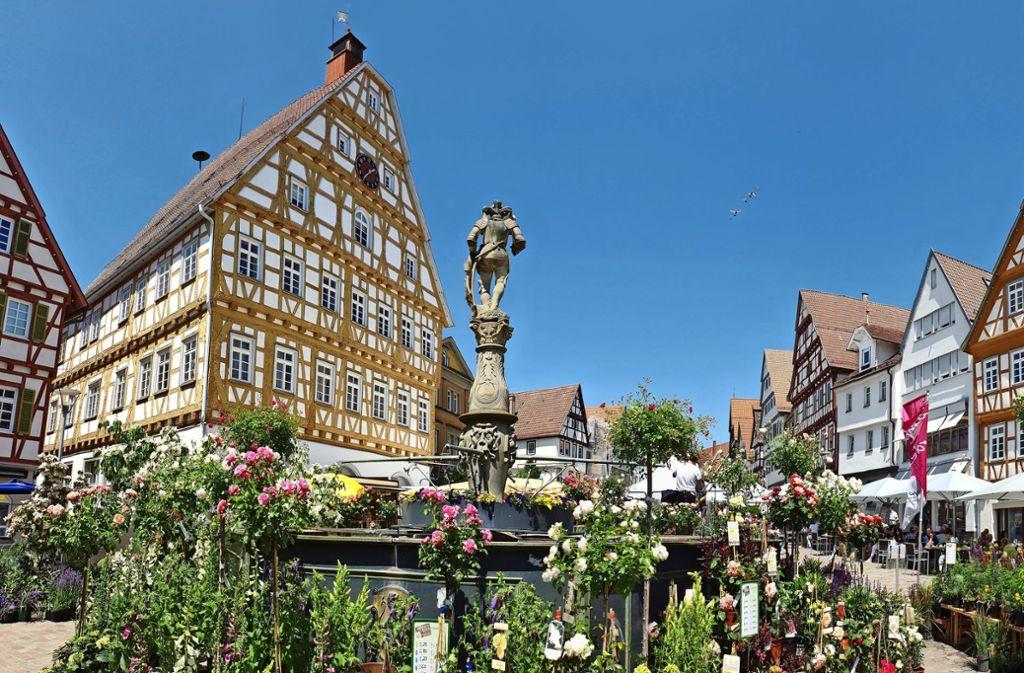 Das vielfältige Angebot des Altstadtgartens kommt bei  Groß und Klein an. Foto: LKZ/Otto