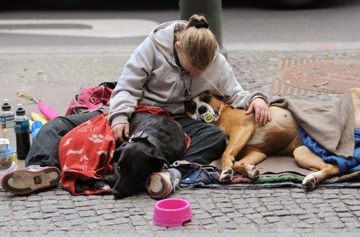 Das Leben auf der Straße hat Spuren hinterlassen