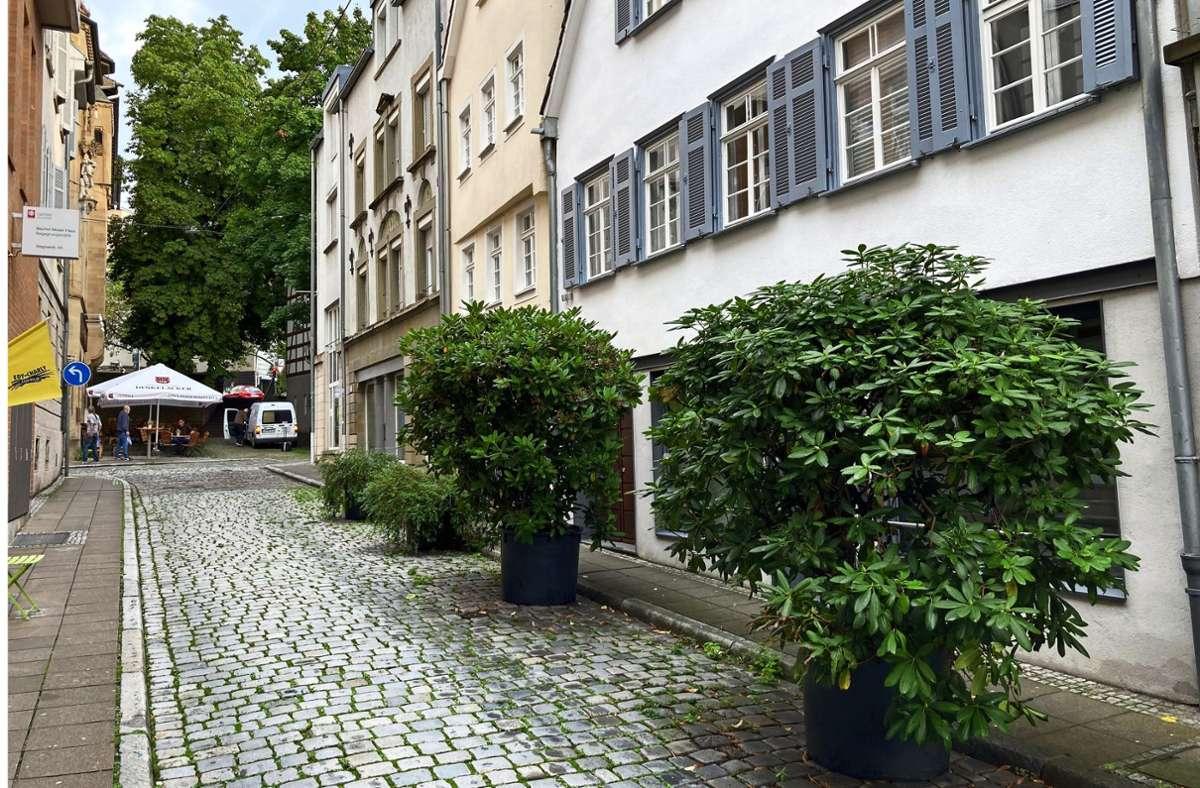 Die Pflanzenkübel in der Wagnerstraße sind dem Ordnungsamt ein Dorn im Auge – obwohl sie vor zig Jahren bereits genehmigt wurden. Foto: Martin Haar