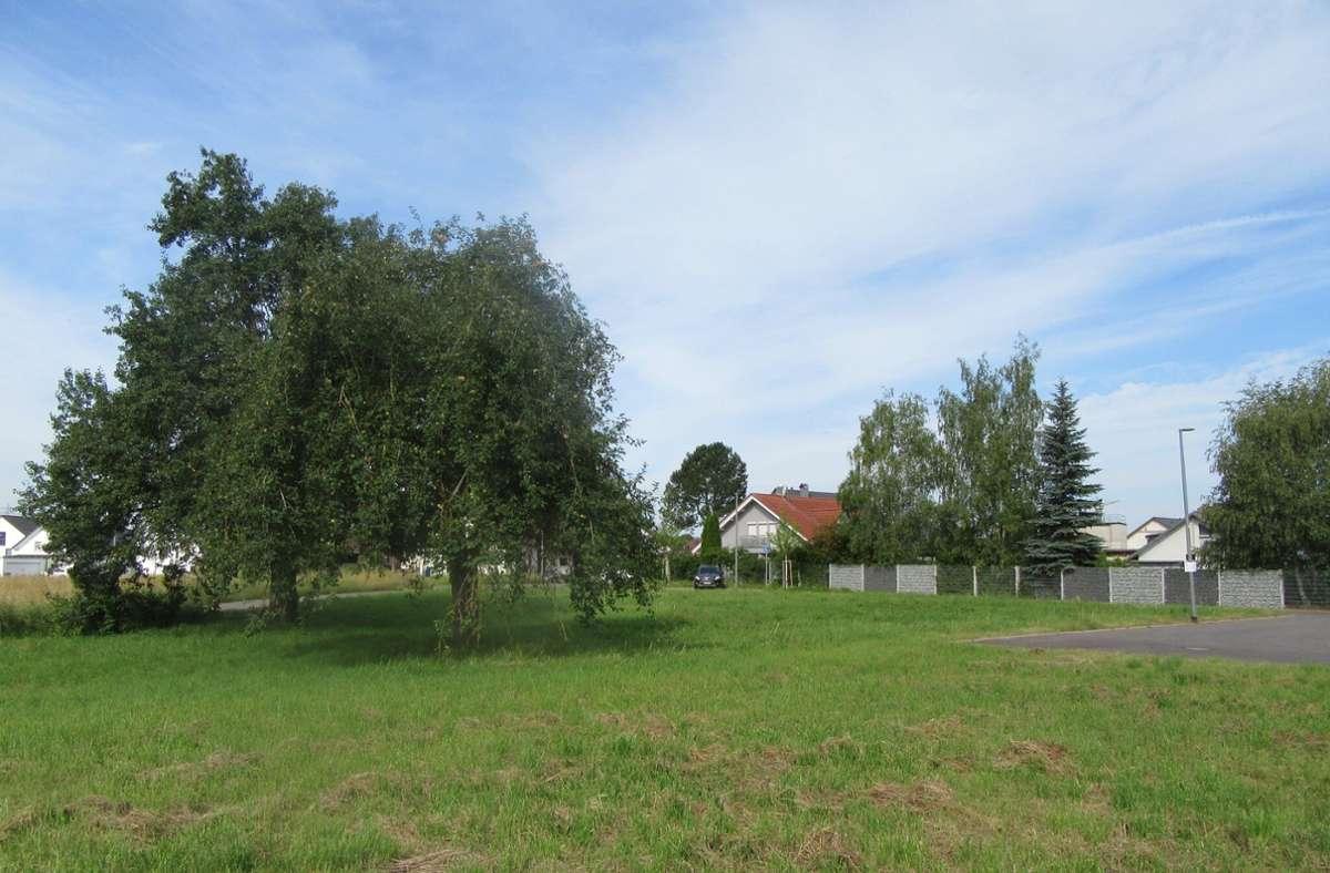 Hier kommt der Spielplatz hin. Foto: Stadt Böblingen
