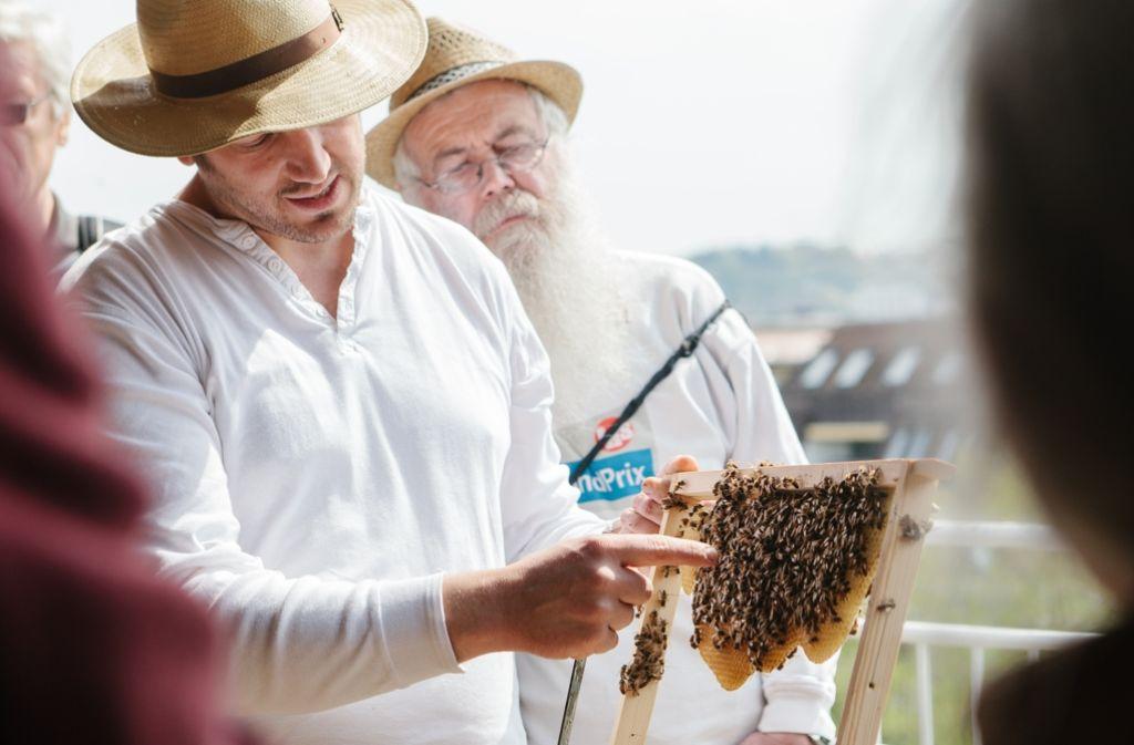 """Tobias Miltenberger referiert bei einem Spaziergang der Stiftung Geißstraße über """"Bienenvölker in der Großstadt"""" Foto: Lichtgut/Verena Ecker"""