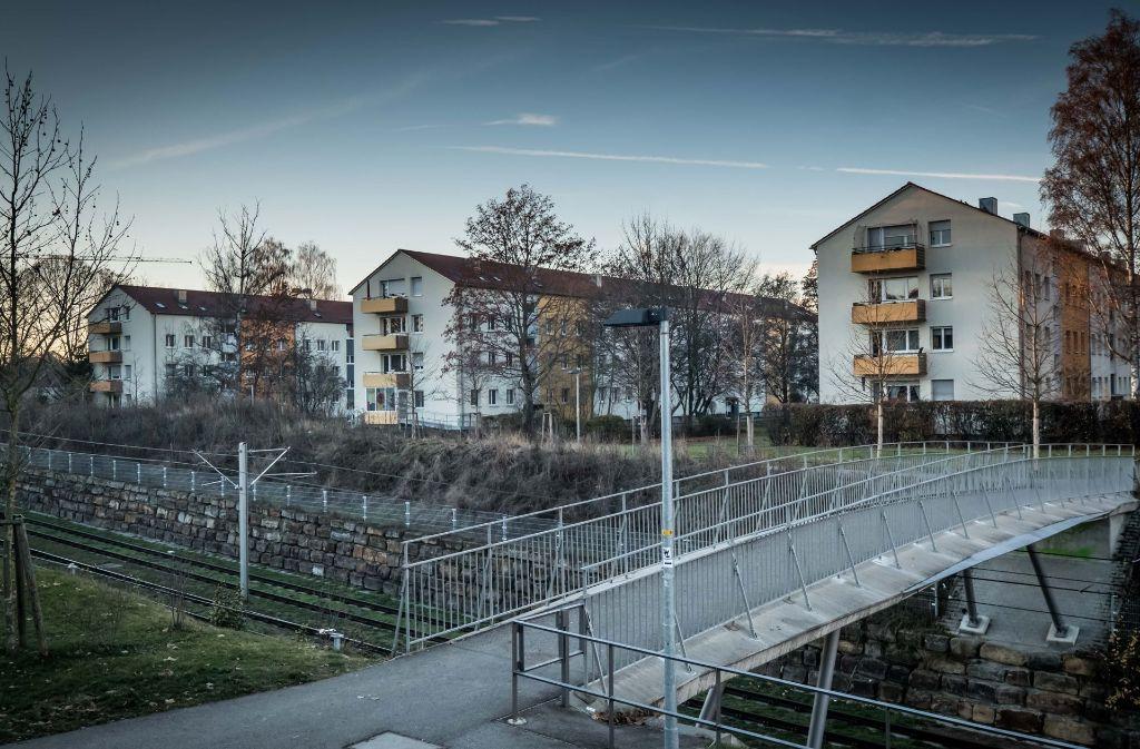 Fünf Genossenschaften wollen auf ihren Grundstücken am Ehrlichweg weitere Häuser bauen. Foto: Lichtgut/Achim Zweygarth