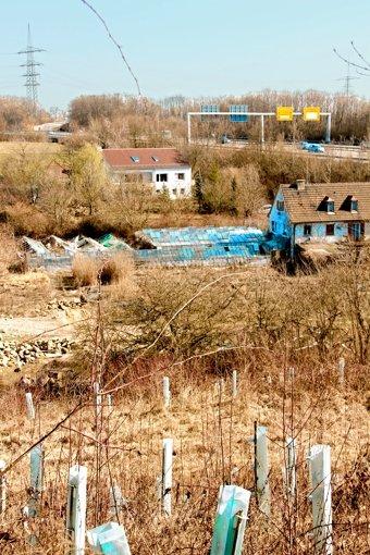 Thema Biogas treibt nun die  Stammheimer  um