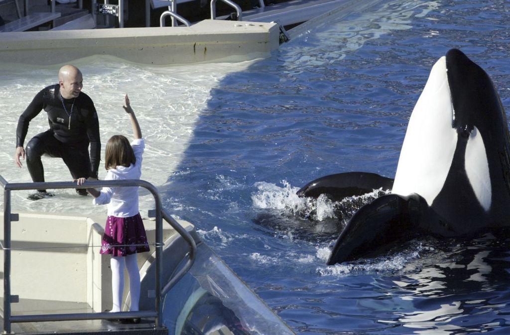 SeaWorld San Diego beendet seine Killerwal-Show. Foto: AP