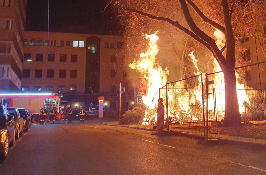 Die Weihnachtsbäume standen regelrecht in Flammen. Foto: /Annika Grah