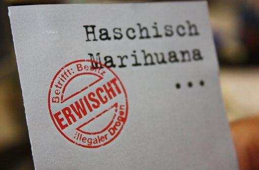 Marihuana-Plantage:  Zwei Jahre Haft für Haupttäter