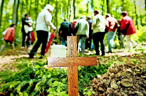 Der Friedwald in Wangen soll erweitert werden