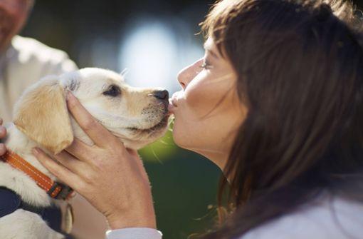 Das sind die beliebtesten Hundenamen der Deutschen