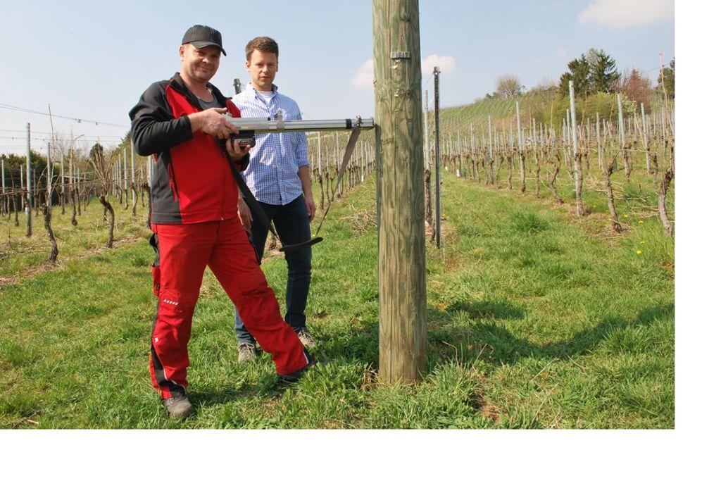 Fritz Schwab nimmt den  Stamm mithilfe eines  Prüfgeräts  unter die Lupe. Die Werte gibt er an Sven Gruschwitz von der Stuttgart Netze GmbH weiter. Foto: Steegmüller