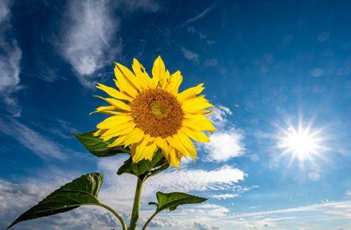 Am Dienstag zeigt sich die Sonne