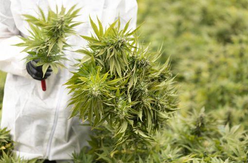 Weltranglistenerster Vergani positiv auf THC getestet
