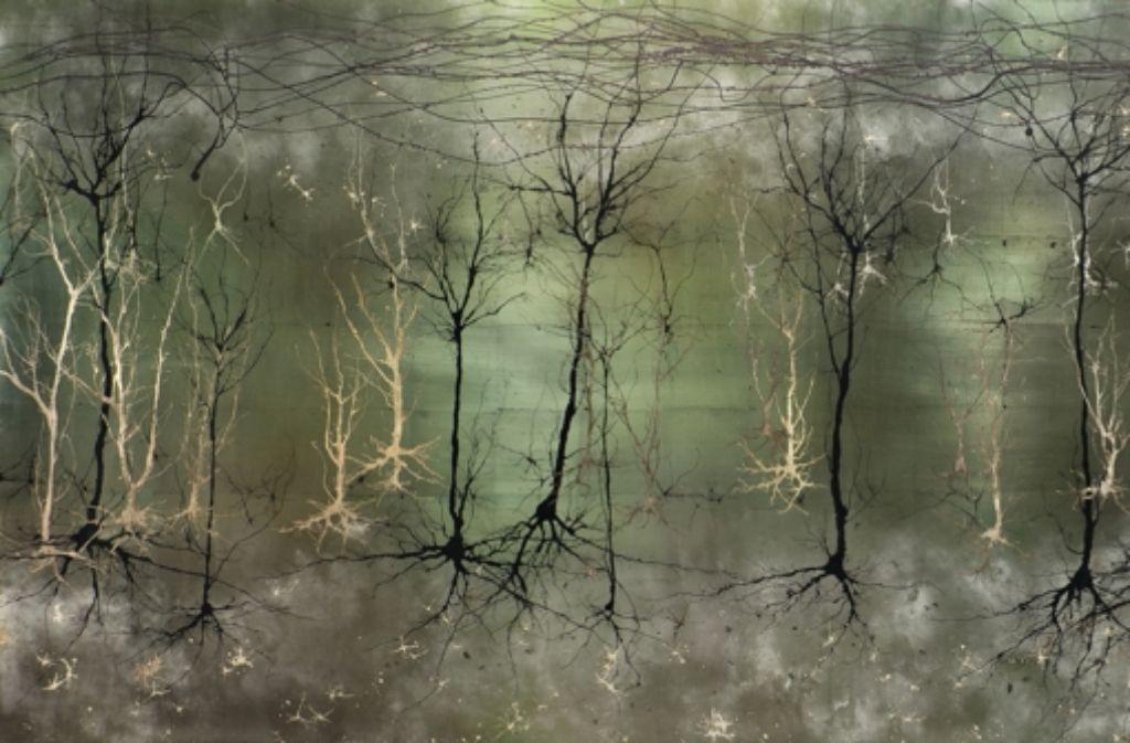 """Das menschliche Gehirn, leicht verfremdet: Das Wissenschaftsmagazin """"Science"""" hat dieses Bild vor einigen Tagen mit dem ersten Preis in der Kategorie Illustration bedacht. Der Designer und promovierte Hirnforscher Greg Dunn hat dazu das Dickicht der Nervenzellen gelichtet. Foto: Greg Dunn Design u.a./dpa"""