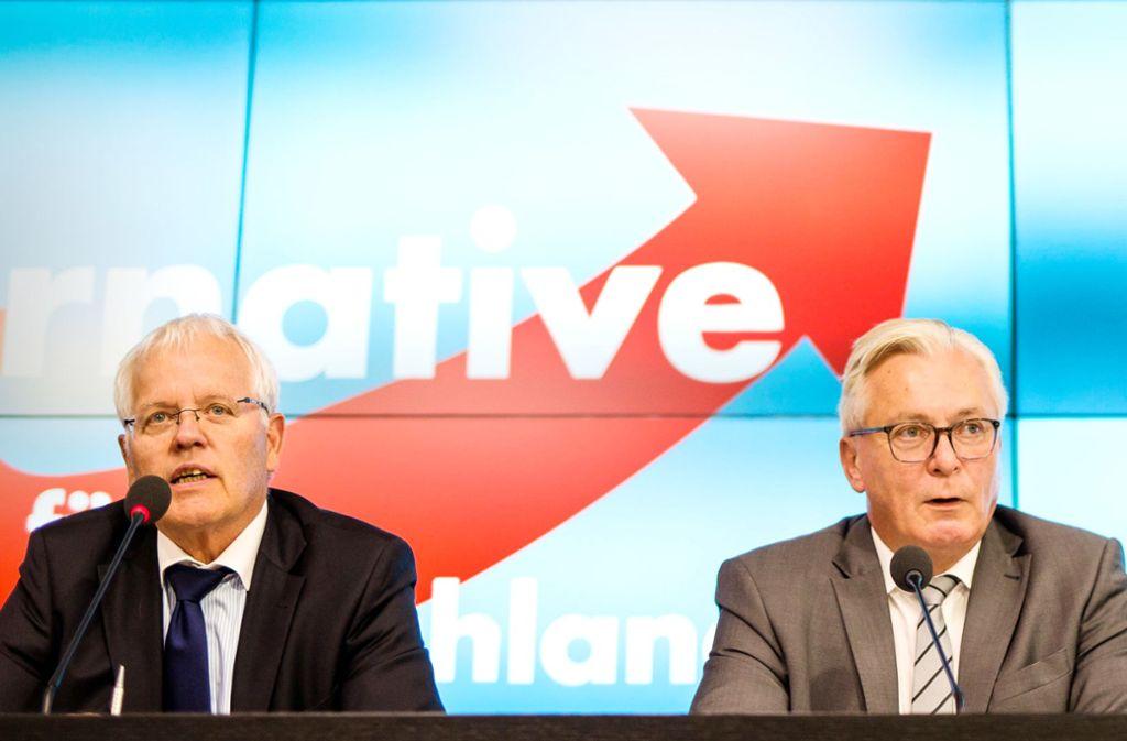 Innerparteiliche Gegner: Emil Sänze und Bernd Gögel (r.) stehen an der Spitze der Landtags-AfD. Foto: dpa/Christoph Schmidt