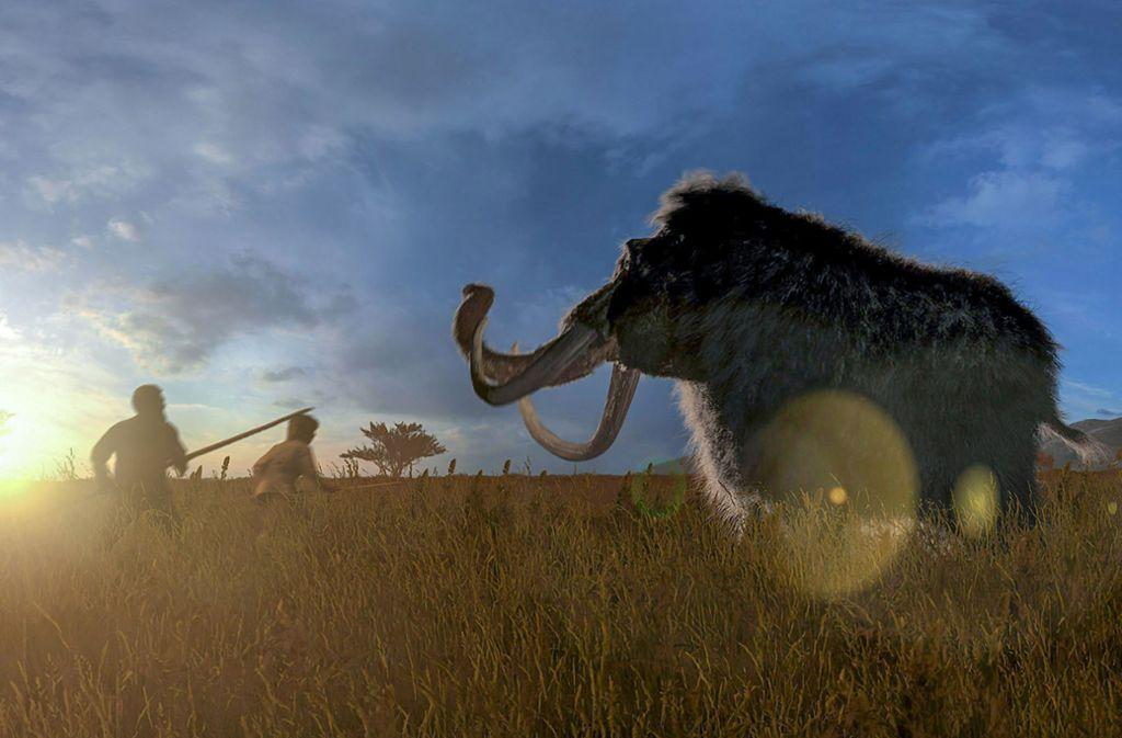 Die letzten Vertreter der Mammute starben erst vor rund 4000 Jahren auf der nordsibirischen Wrangelinsel aus. Foto: Holger Neuhäuser/ZDF/dpa