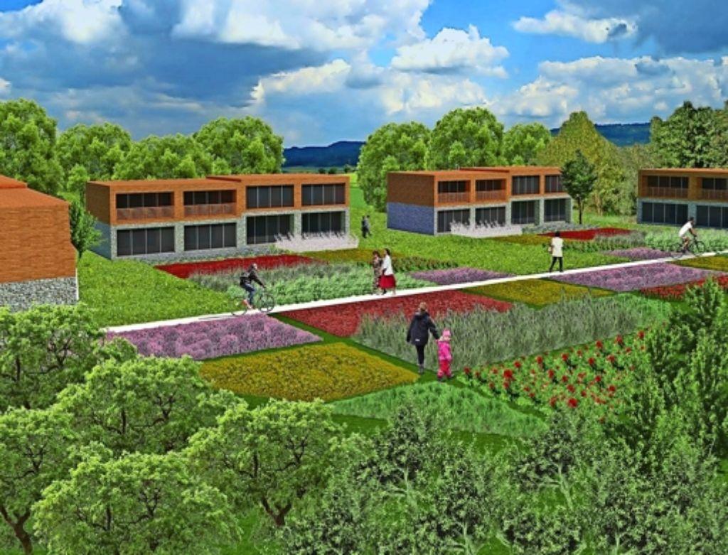 Viel Grün sollte es rund um die kostengünstigen Strohhäuser geben. Foto: Izar
