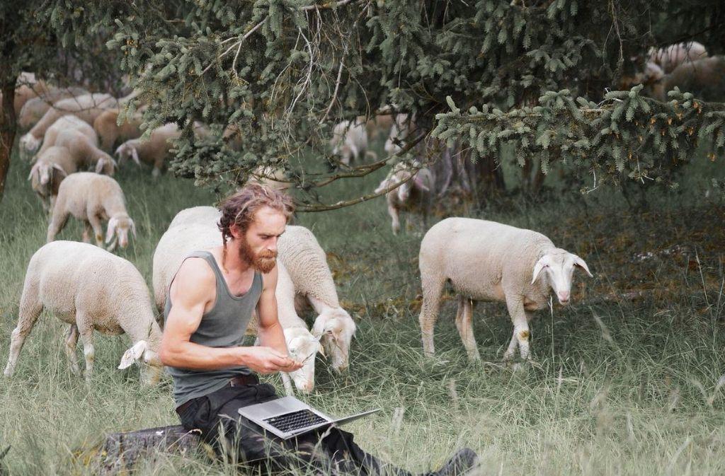 Sven de Vries ist Schäfer auf der schwäbischen Alb und berichtet via Twitter über seine Erlebnisse. Foto: Sven de Vries