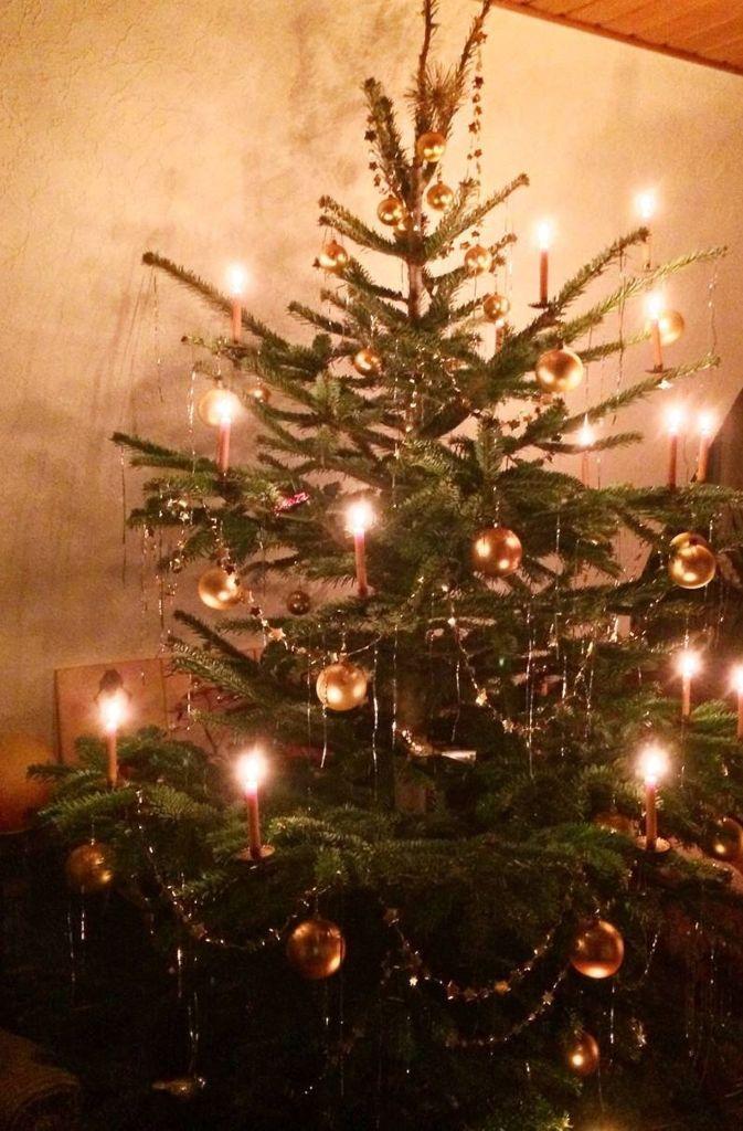 mein weihnachtsbaum ist der sch nste baum weil drei. Black Bedroom Furniture Sets. Home Design Ideas