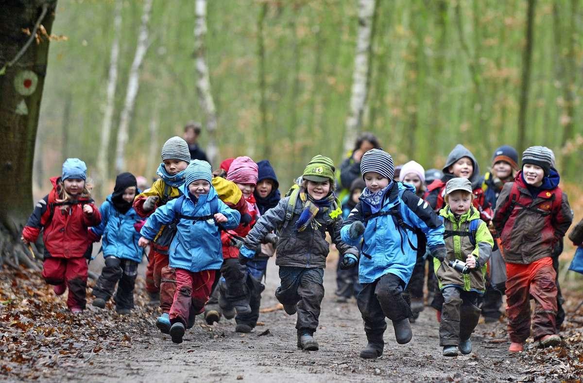 """Getreu dem Motto """"Schlechtes Wetter gibt es nicht, nur schlechte Kleidung"""" sind die Mädchen und Jungen in einem Waldkindergarten nahezu immer draußen. Foto: Philipp Schulze/dpa"""