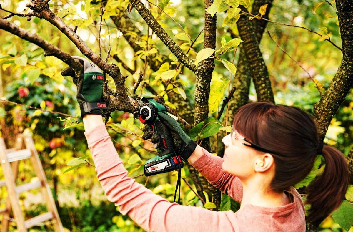 Künftig passt der Akku nicht nur in diese Mini-Akkusäge  von Bosch, sondern auch in Heimwerkergeräte  anderer Hersteller, die an der Akku-Allianz beteiligt sind. Foto: Bosch