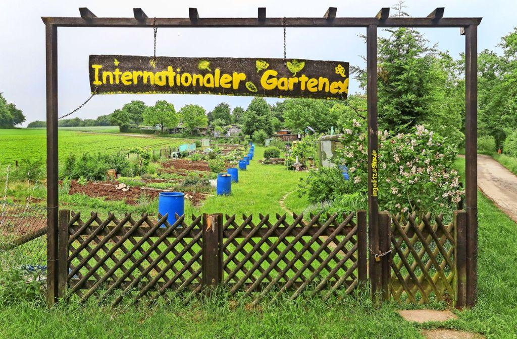 In   und  um den Internationalen Garten in Ditzingen hat die Natur ihren Raum. Der  Verband LEV will die Kulturlandschaft insgesamt   pflegen, nicht nur in geschützten Bereichen. Foto: factum/Granville