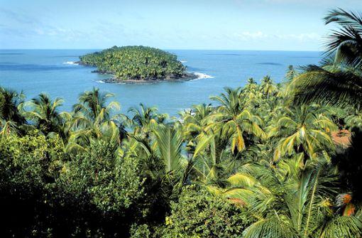 Segen oder  Fluch der Karibik?