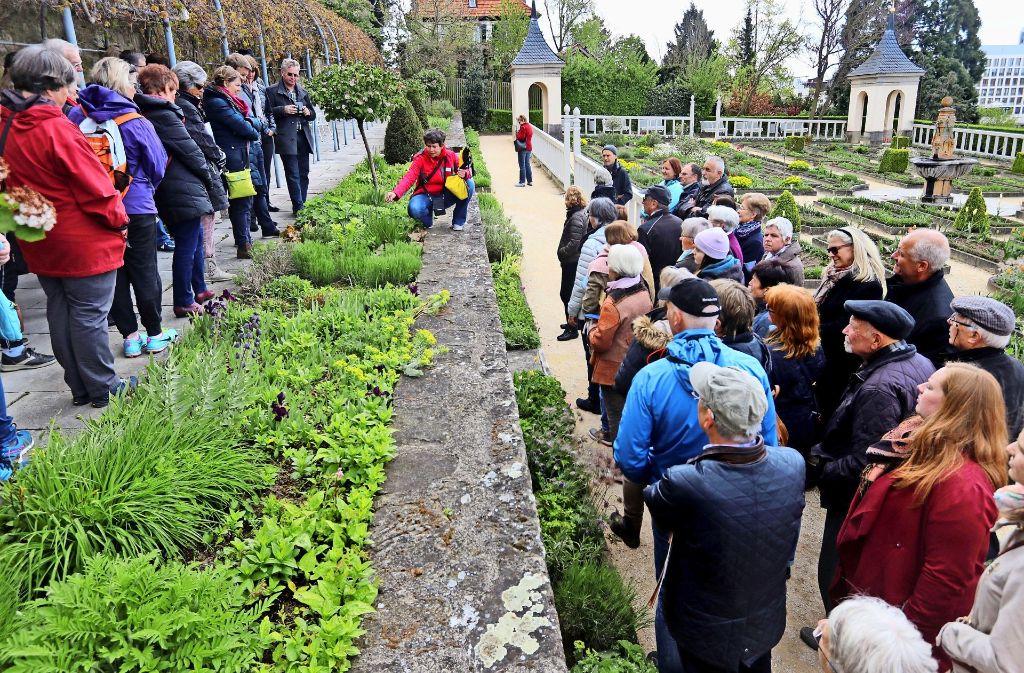 Bei Sibylla musste es blühen und duften: Die Gartenbau-Ingenieurin Jana Hubbes erläutert die Lieblingspflanzen der Herzogin im Pomeranzengarten. Foto: factum/Granville