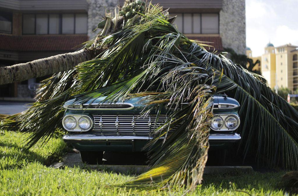 """Die Hurrikans """"Harvey"""", """"Irma"""" und """"Maria"""" wüteten im Jahr 2017 über der Karibik und der Atlantikküste der USA. Foto: AP"""