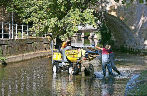 Die Neckarkanäle werden wieder  herausgeputzt