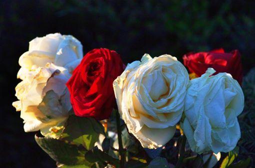 Bestattungen werden für Angehörige live im Internet übertragen
