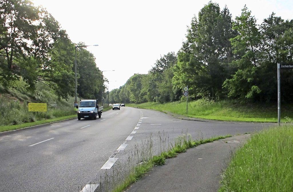 Der Bau eines Fuß- und Radweg-Stegs über den Seeblickweg verzögert sich. Foto: Frey