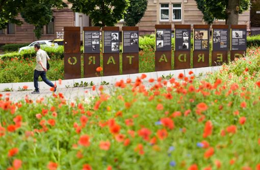 Die Stadt  lässt Blumen blühen