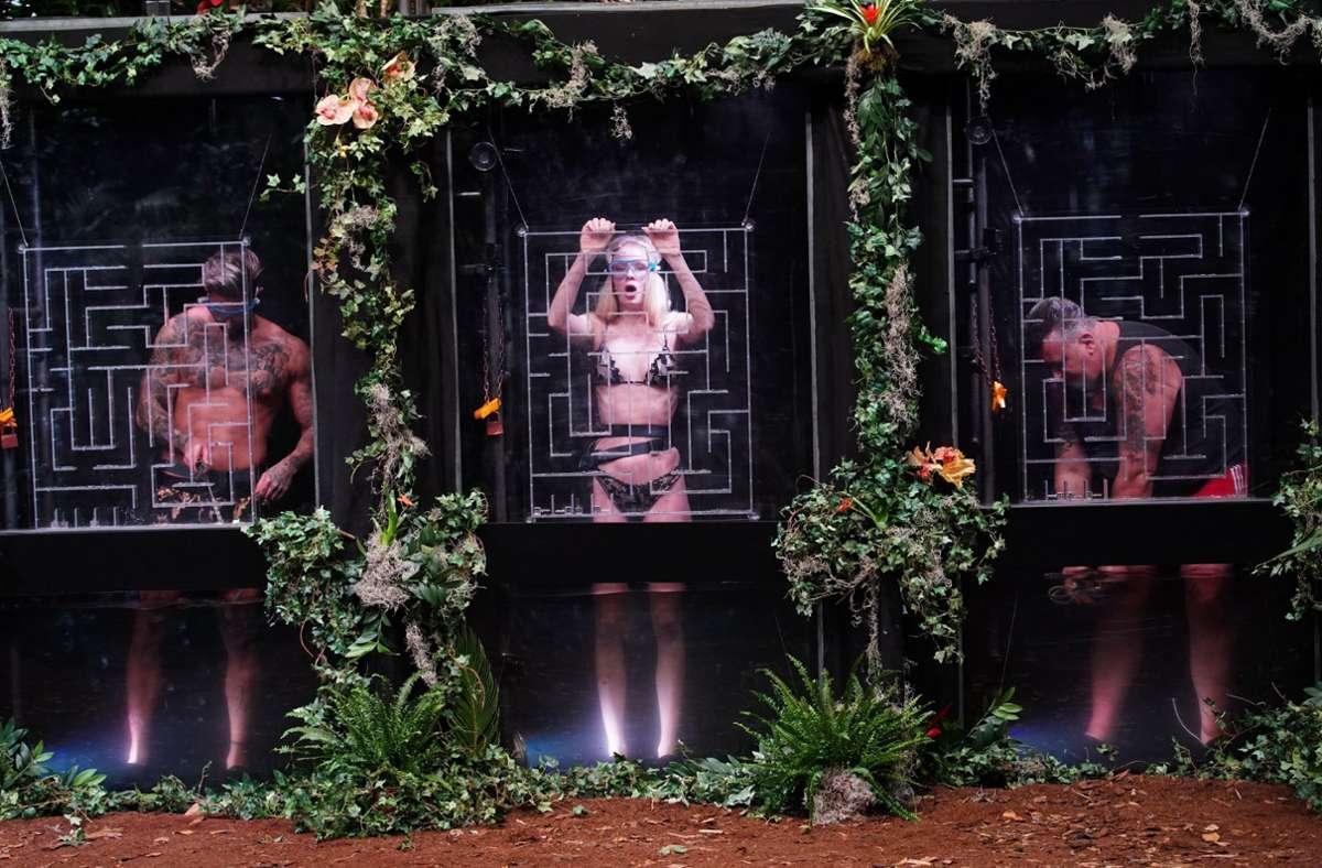 Mike Heiter (l.), Zoe  Saip und  Frank Fussbroich wurden bei der Prüfung auf ihre Dschungeltauglichkeit geprüft. Foto: TVNOW /Stefan Gregorowius