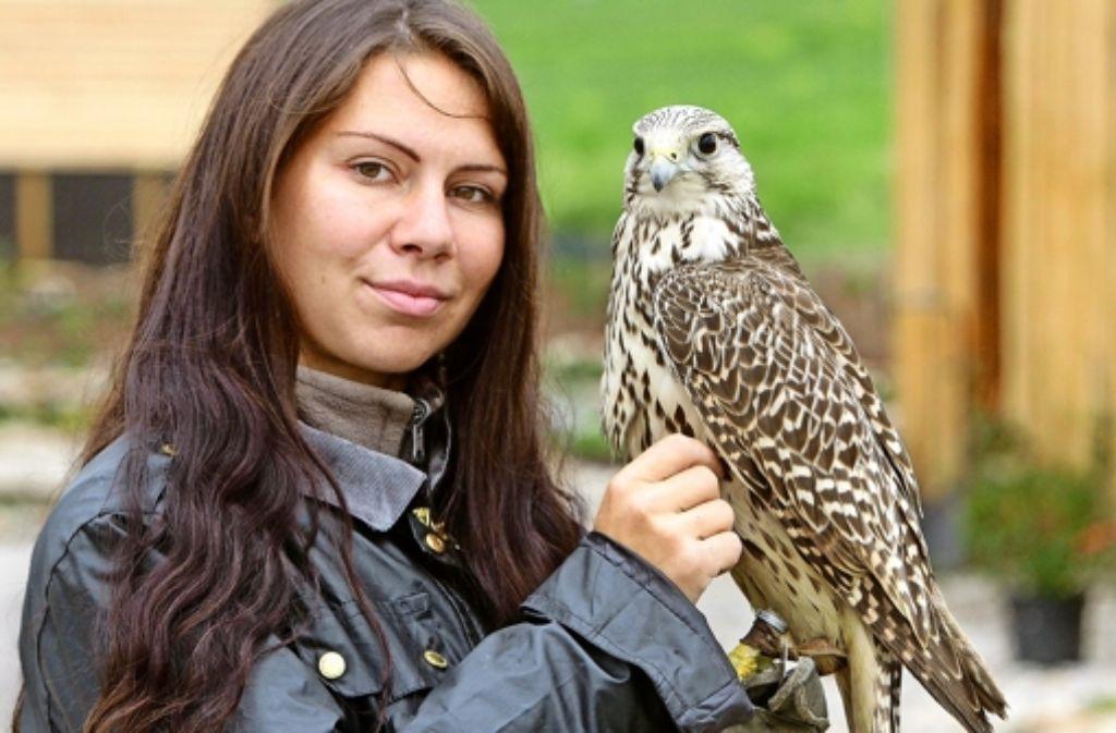 Vanessa Müller arbeitet als Falknerin mit Eulen und Greifvögeln. Foto: factum/Bach