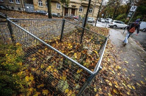 Laubgitter sollen Stuttgartern die Kehrwoche erleichtern