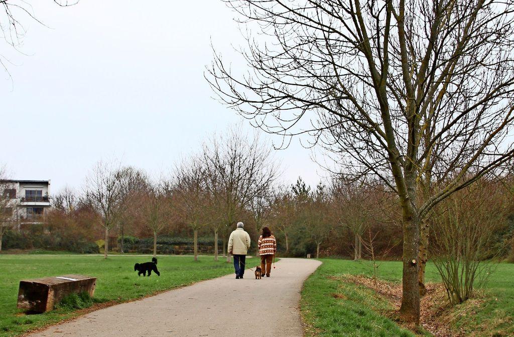 Die Bewohner im Birkhof fürchten den Verlust ihrer Naherholungsflächen. Das Fraunhofer und die Uni wollen ihre Einrichtungen teils auf dieser Wiese erweitern. Foto: Sabrina Höbel