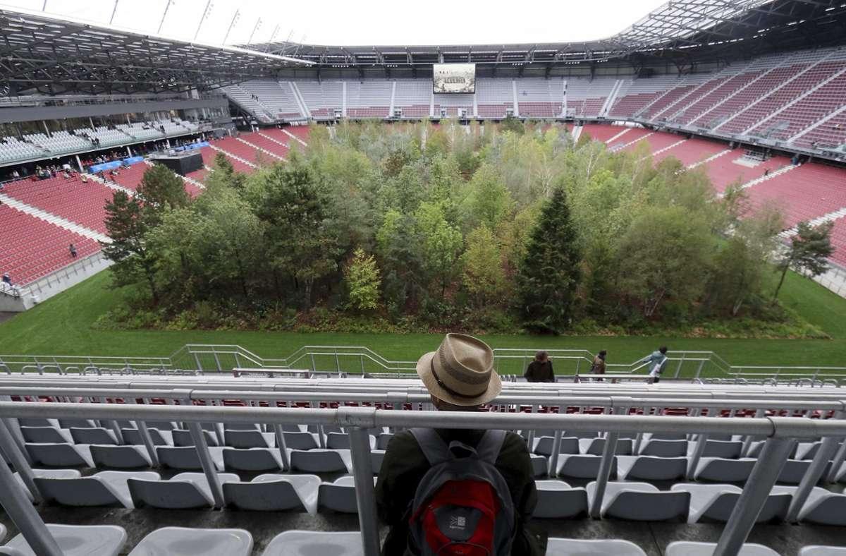 Wald in Österreich: Die Kunstinstallation «For Forest» im Klagenfurter Stadion. Foto: dpa/Ronald Zak