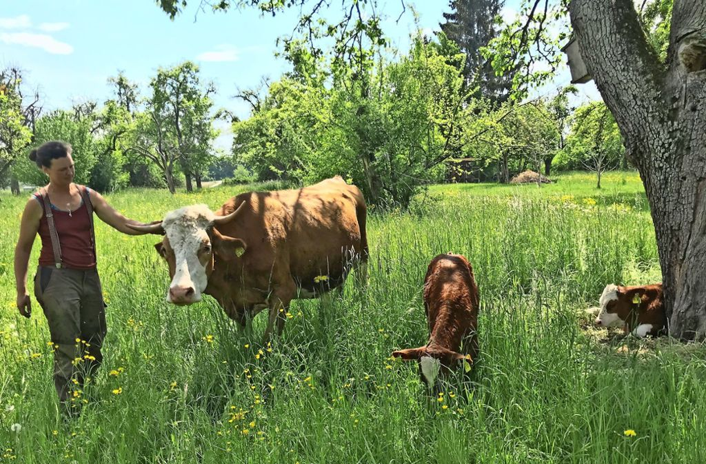 Anna Laura Hübner mit der Kuh Fiona, die Zwillinge bekommen hat Foto: Julia Bosch