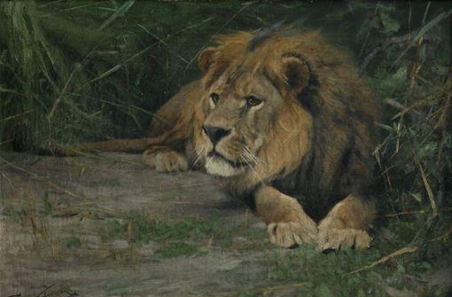 Seine Majestät, der Löwe